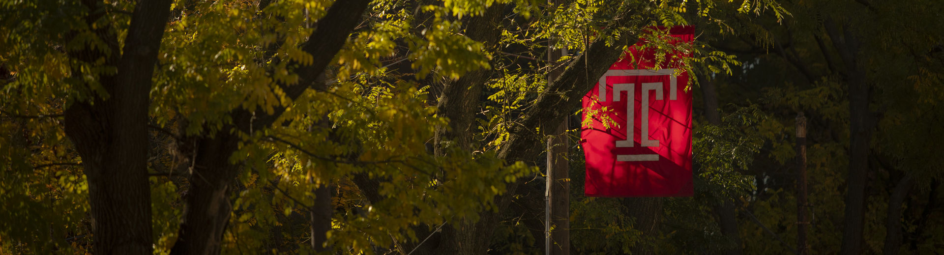Temple T flag on campus